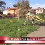 Prato Cornelio, abbandonato il parco dietro Eurospin